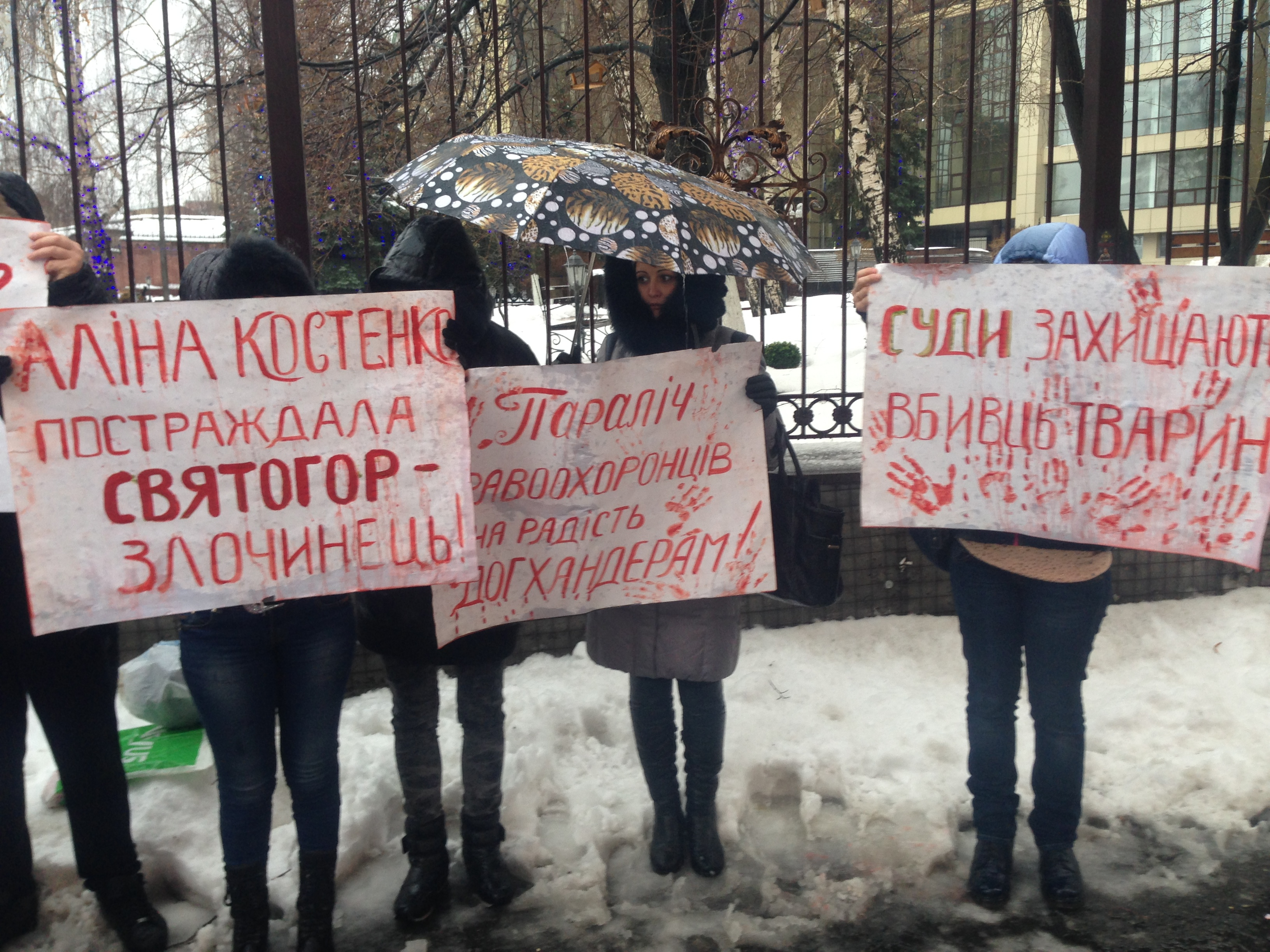 Акция в поддержку киевской зоозащитницы