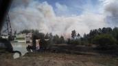 Лесной пожар в Чернобыльской зоне
