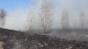 Пожар в Чернобыльской зоне