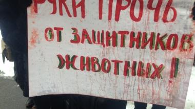 Акція на підтримку київської зоозахисниці