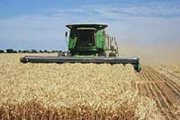 Ukrainian agrarians: the state provokes the crisis in agricultural field