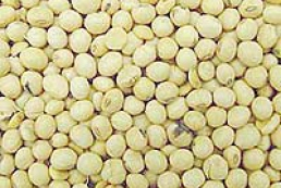 Ukraine to ban the import of modified soy