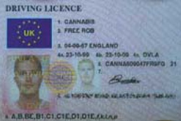 Driving licenses of new European standards will be issued