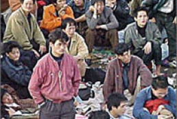 Ukrainian police arrested Chinese illegal immigrants