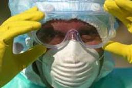 Ukraine, Moldova and Romania join efforts to fight bird flu