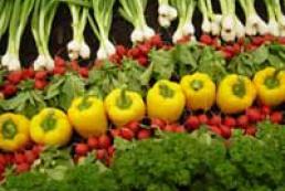 Analysis of Ukrainian agrarian import