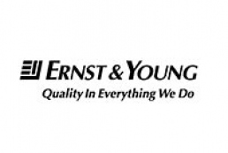 Ernst & Young Co opens representative office in Donetsk