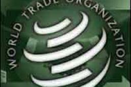 The Verkhovna Rada adopted the last WTO bill