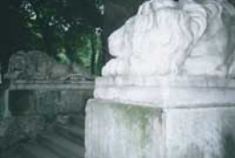 Lviv numbers three thousand of stone lions