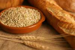 Agrarian Ministry prepares draft resolution on authorization of grain export