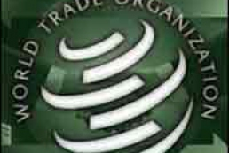 WTO can consider Ukrainian question in a month