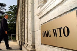 Ukraine needs to adopt 60 laws in order to join WTO