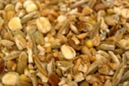 Farmers seeking abolition of grain export duties