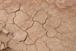 Ukraine suffers worst autumn drought in 50 years