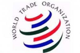 Ukraine asking WTO for revising tariff commitments