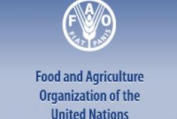 FAO regional office may open in Ukraine