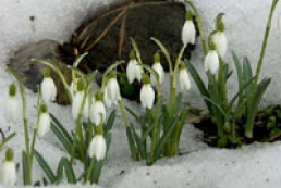 Spring will come to Ukraine in mid-March