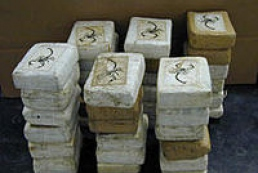 The largest shipment of cocaine is destroyed in Ukraine
