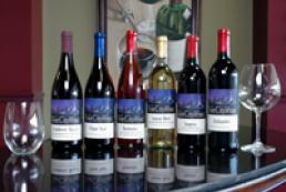 Sevastopil to host wine art fest