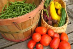 Azarov praised the high quality of Ukrainian vegetables