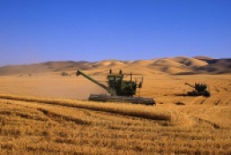 18.3 million tons of grain collected in Ukraine