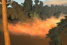 Over five hundred fires occurred in Ukraine for the last 24 hours