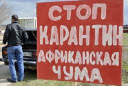 Cases of African swine fever virus registered in Ukraine
