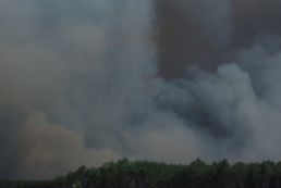 1.5 thousand hectares of forest affected by fire in Kherson region