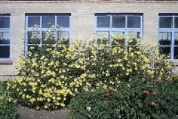 More than 100 Poltava region schools lack warm toilets