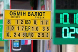 There will be no reduction of hryvnia exchange rate, Yefremov predicts