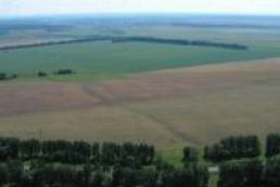Prysyazhnyuk: Land market not to start working from January 1