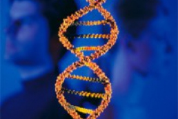 DNA data may be introduced in biometric passports