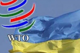 Ukraine holding talks on improving conditions of accession to WTO