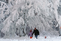 Ukraine to have frost period starting from December 13