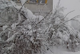 Bad weather leaves 577 Ukrainian settlements without electricity