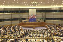 Political analyst: EP statements concerning Svoboda are strange