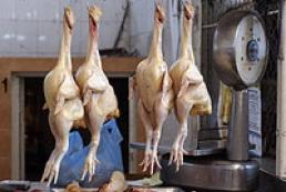 Russian vets found dangerous microorganisms in Ukrainian chicken