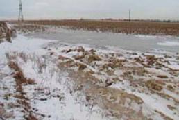 Ukrainian overwintering crops are in good condition