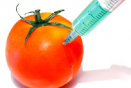 GMO issue bothers 70% of Ukrainians