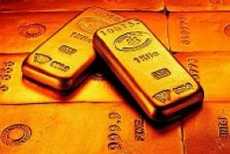 Expert: Ukrainian economy has enough foreign reserves