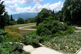 Nikitsky botanical garden to open adventure park