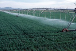Cabinet to allocate $2 billion to restore irrigation system