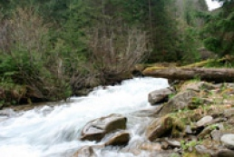 Kulbida: Increase in water level in Carpathian rivers expected
