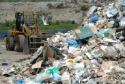 Azarov orders to organize garbage collection in country