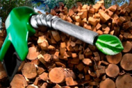 Agrarian Ministry, Finland agree on investments in biofuel