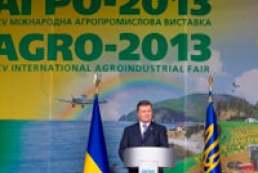 Yanukovych: State shouldn't forget about problems of village