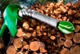 MP: Bioenergy will make Ukraine energy independent