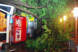 Four people injured, one killed due to Odesa hurricane