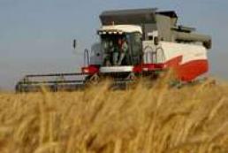 Ukraine starts harvesting grain crops