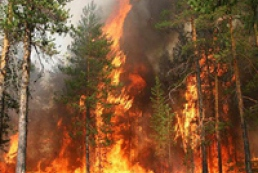 Increased fire risk in Ukraine will continue until mid-October